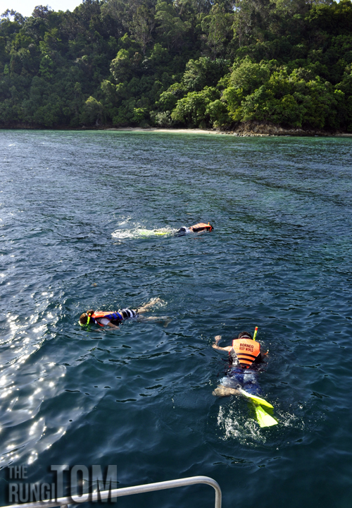 Snorkeling My Waterworld: Borneo Reef World