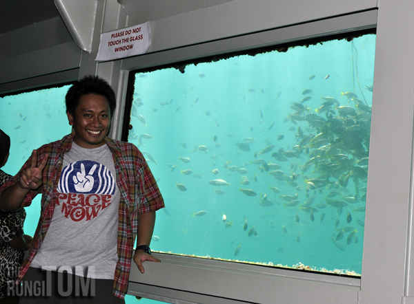 peace yo My Waterworld: Borneo Reef World